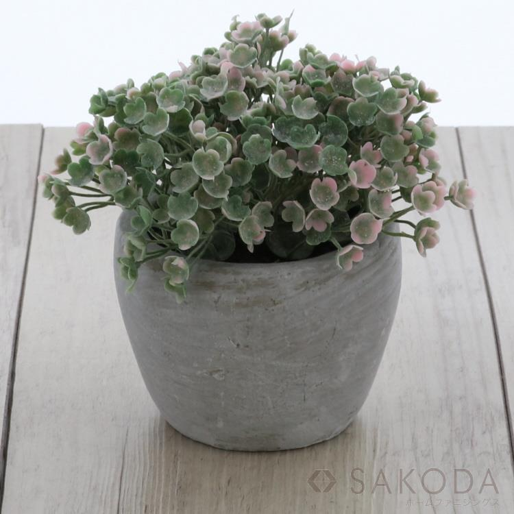 DLP3255-2  TERRACOTTA POT