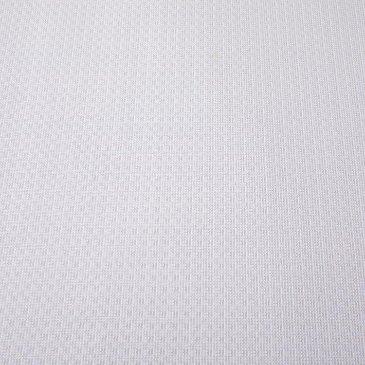 花粉キャッチレース クリア WH 100x198 2枚組