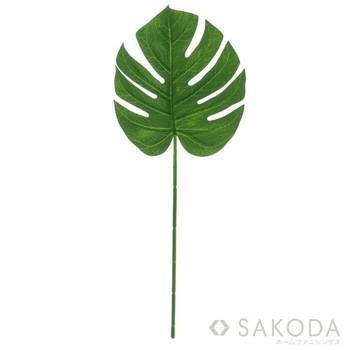 GS-2310030 MONSTERA LEAF(S) 550 GN