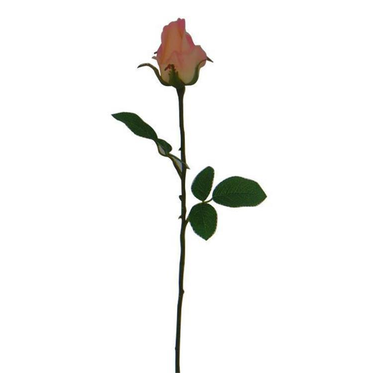 GS-0600156  Rose bud*1 460 PI