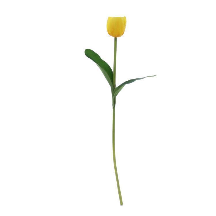 GS-1280028  Single Tulip(M) 570 YE
