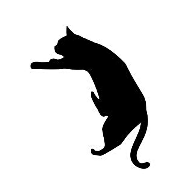 WS-CAT-05  CAT 落ちそう 148