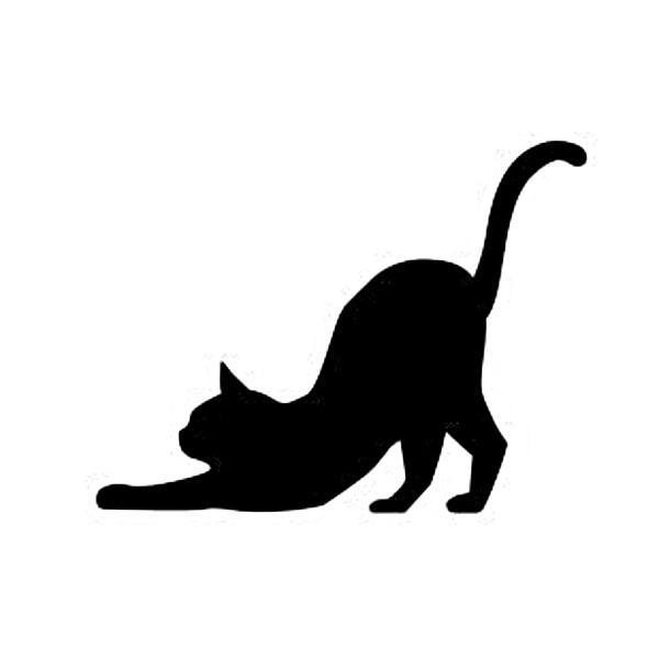 WS-CAT-06  CAT 伸び 148