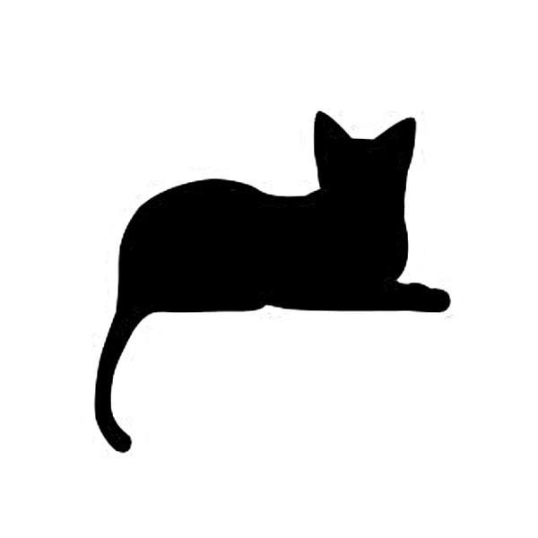 WS-CAT-07  CAT 寝そべり 148