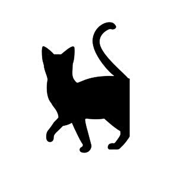 WS-CAT-08  CAT ちょっとそこまで 148