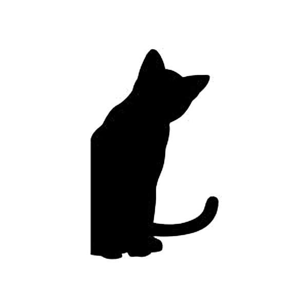 WS-CAT-10  CAT 呼んだ? 148