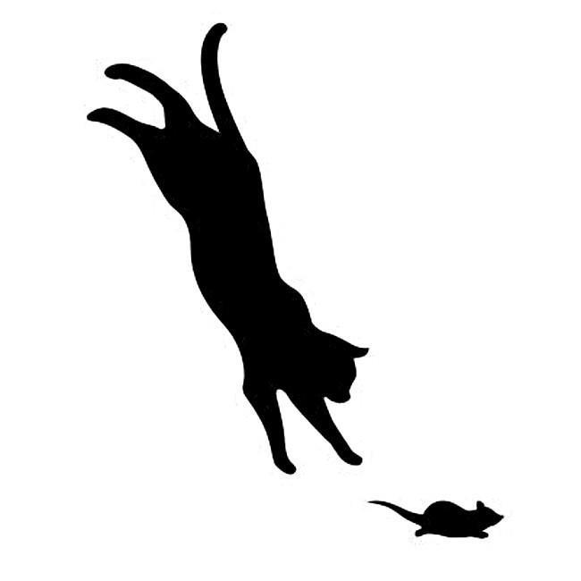 WS-CAT-12  CAT ジャンプ 148
