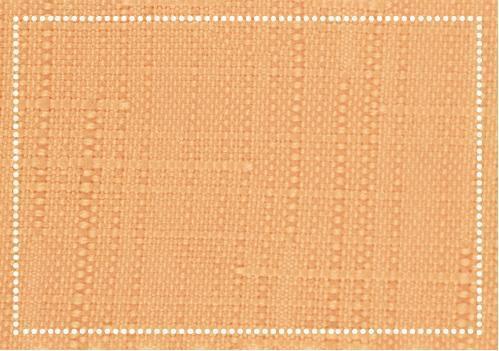 P00481  キャンバス プレイスマット アプリコット 33×45cm