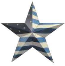 (91)USFLBSSB  USフラッグ バーンスター BL S