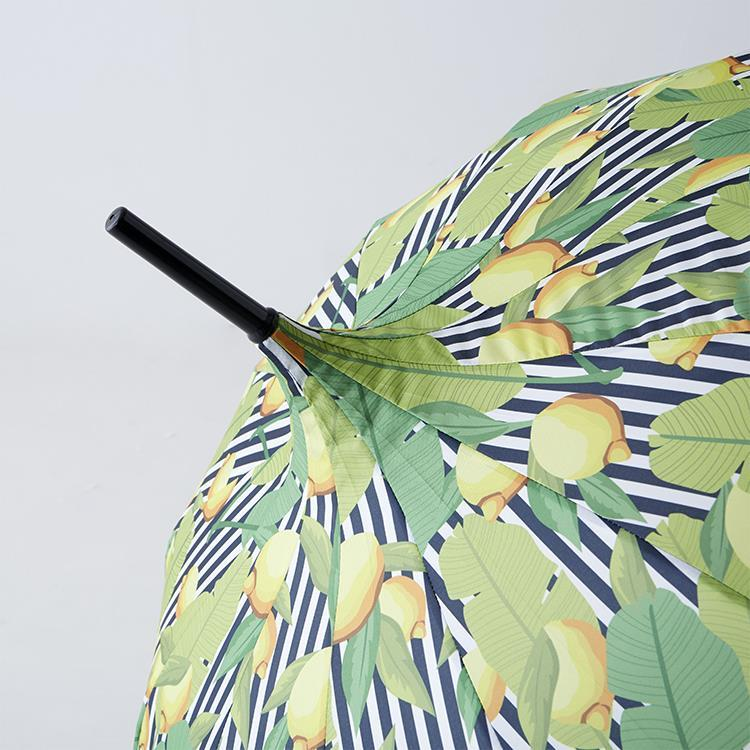 【WEB限定】UM910003 モリーマレ ストライプレモン