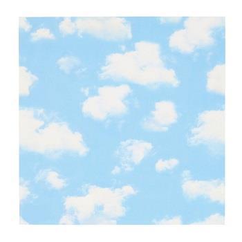 MTWS4609 mtCASA SHEET壁 1枚 空と雲 460×460mm