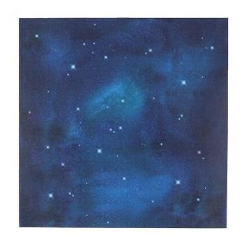 MTWS4610 mtCASA SHEET壁 1枚 夜空 460×460mm
